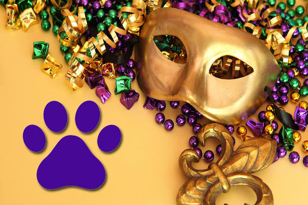 Mardi Gras for Paws