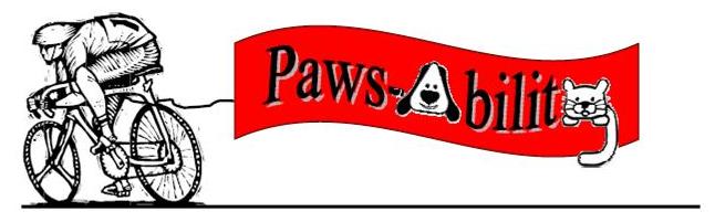Paws-Ability-Poker-Run